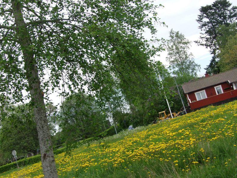 visit to Sweden
